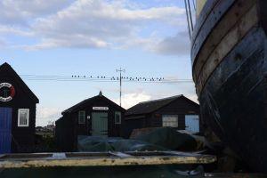 southwold-08.jpg